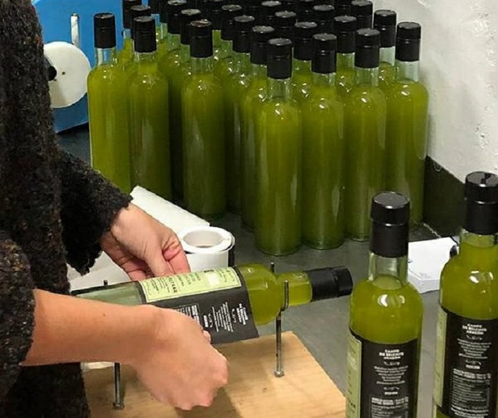 cortes gourmed, molinoalfonso, frescolio, aceitefresco, ernte2019, olivenöl, ungefiltert, arbequina, frischesolivenöl,
